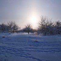 Экскурсия в Гадюкино зимой (8) :: Александр Резуненко