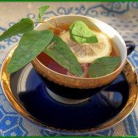 Пьем целебные чаи: напиток с эвкалиптом лимонным :: Андрей Заломленков