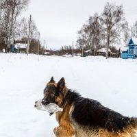 Деревушка Ильинское... :: Влад Никишин