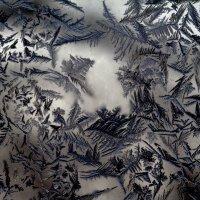 мороз рисует :: Евгений Воронков