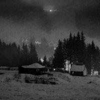 Зимняя сказка :: Виктория Бондаренко