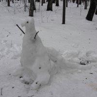 Обитатели Измайловского парка :: Андрей Лукьянов