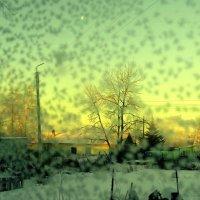 Снежок на рассвете :: Милла Корн