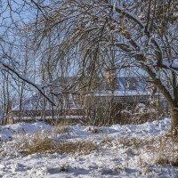Опять выпал снег :: Игорь Сикорский