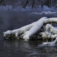 Творение матушки Зимы и дедушки Мороза :: Владимир Максимов
