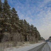 По зимней дороге :: leo yagonen