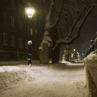 Долгожданный снег :: leo yagonen