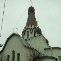 Церковь св. Петра Московского патриархата в Санкт-Петербурге. :: Светлана Калмыкова