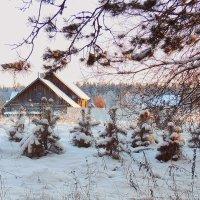 Зима. :: Павлова Татьяна Павлова