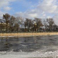 Зимняя оттепель :: Aнна Зарубина