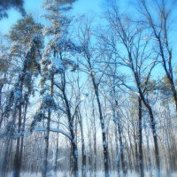 просто зима :: Александр Беляков