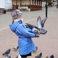 Любовь и голуби :: Настя Жукова