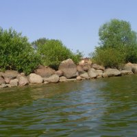 Побережье Псковского озера :: Виктор Мухин