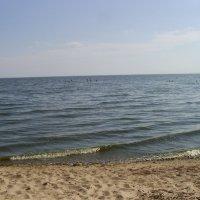 В акватории Псковского озера :: Виктор Мухин
