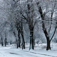 Вот она — зима! :: Валентина ツ ღ✿ღ