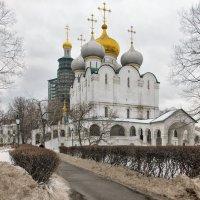 Ни то зима - ни то весна - 31 января... :: Ирина Шарапова