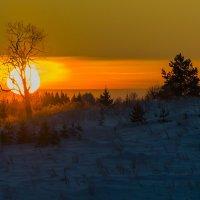 Закат морозной зимой :: Дмитрий Царапкин