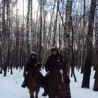 Моя полиция меня бережет :: Андрей Лукьянов