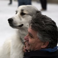 2 профиля :: Alexander Hersonski