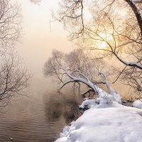 Туман над водой. :: Анатолий 71