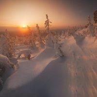 Морозное утро :: Виталий Истомин