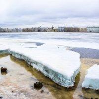 Питерская весна в конце января. :: Виктор Орехов