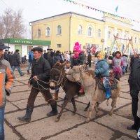 Веселые старты  по казахски. :: Николай Сапегин