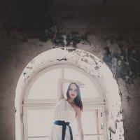 лебедь :: Наташа Скрипка