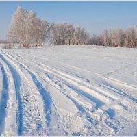 Зимник :: Сергей Бережко