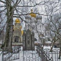 Новодевичий монастырь в январе :: Ирина Шарапова