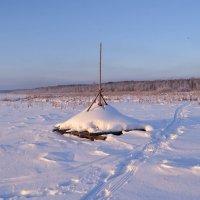 покос под снегом :: сергей