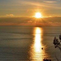 Лучистое солнце. Зимой в Балаклаве. :: Ольга Голубева