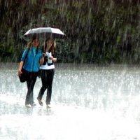 дождь :: Леонид Натапов