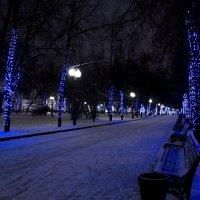 Новогодние праздники :: Christina Pleskach