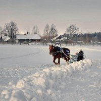 По снежку трусцой :: Валерий Талашов