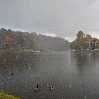 У природы нет плохой погоды... :: Евгений Кузнецов