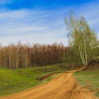 Весна идет :: Сергей Степанов