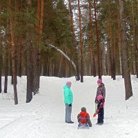 Отдых в лесу. :: Мила Бовкун