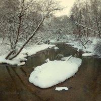Река Воря :: KotoPalych