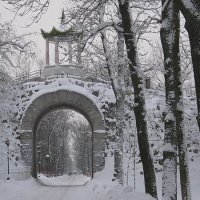 Большой Каприз зимой.... :: Tatiana Markova