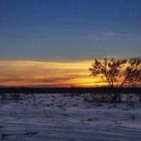 зимняя закатная степная :: Сергей Рычков