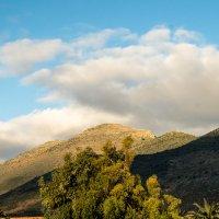 Горные склоны побережья Лигурии :: Witalij Loewin