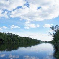 Река. :: Александр Куликов