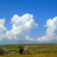 Небо :: Виктор Шандыбин