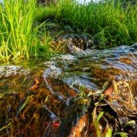 Кисельная река :: Фролов Владимир Александрович