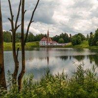 На Чёрном озере. :: Марина Павлова