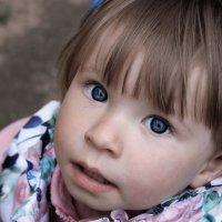 Голубые глазёнки :: Анастасия Алёшина