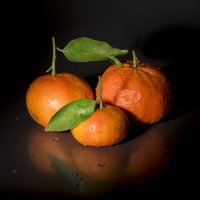 Mandariny :: Robert Kozlovskij