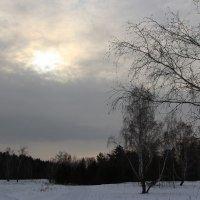 тишина... :: Ирина