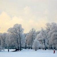 зимний парк :: Елена